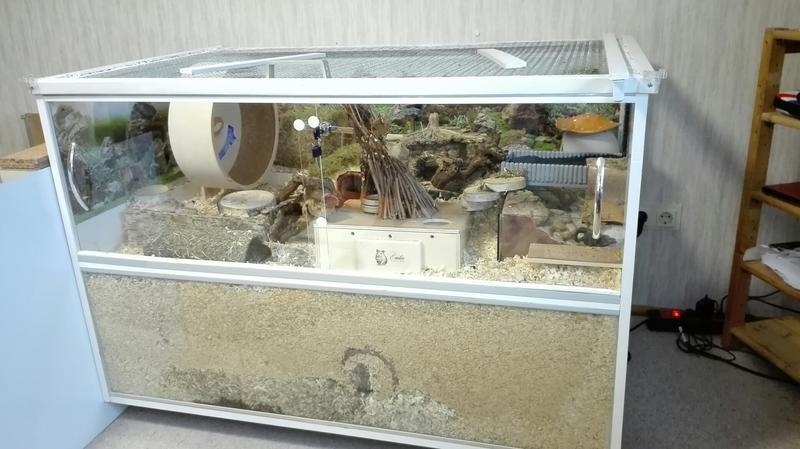 Eigenbau Inspiriert Durch Herr Der Ringe Grosse 120x75 Das Hamsterforum